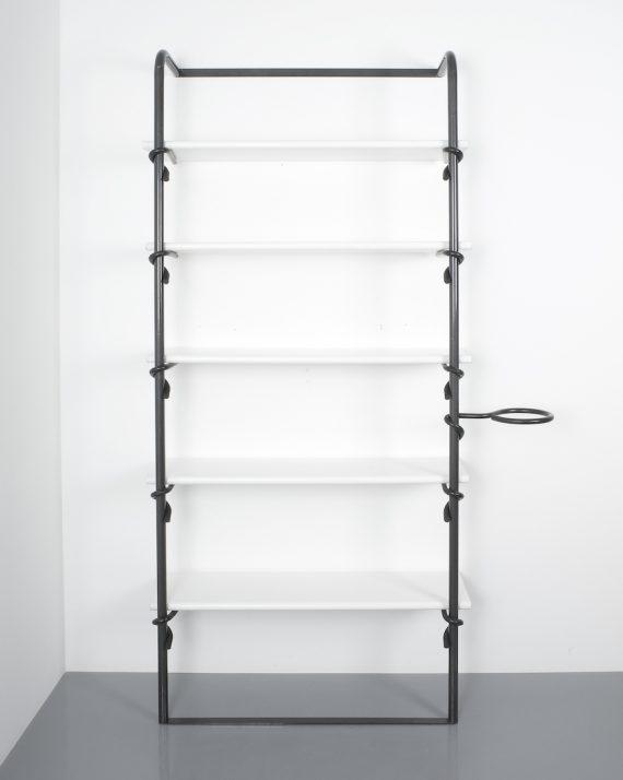 shelf Pagani e Angelo Perversi_11